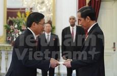 印尼总统佐科·维多多:印尼希望与越南加强战略伙伴关系