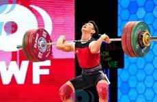 越南举重队获得三份2016年里约奥运会入场券