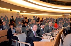 12·10世界人权日:越南积极参与并认真履行国际人权条约