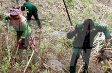 越南清化省边防部队和老挝华潘省军事指挥部加强合作