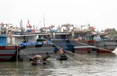 """越南加强防范台风""""茉莉""""措施"""