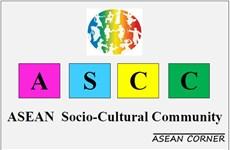 越南努力同东盟各国携手构建多样化中求统一的东盟文化