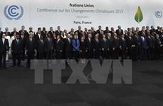 越南为第21届联合国气候变化大会的成功作出重要贡献