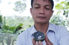 """越南宣光省和安沛省出现的""""异物""""并非属于越南制造"""
