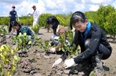 2016年:越南采取配套措施应对气候变化