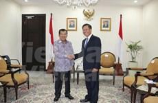 越南与印尼促进战略伙伴关系