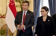 印度尼西亚与新加坡加强多个领域的合作
