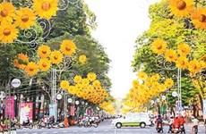 胡志明市摆放鲜花彩旗 喜迎越共十二大