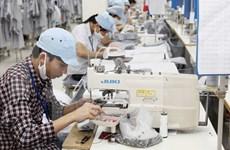 欧盟越南商会致力加强越欧企业的联系