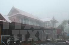 低温降雪天气对越南北部地区农业造成严重损失
