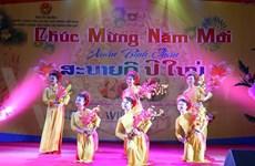 越南驻外使领馆纷纷举行迎2016丙申春节活动