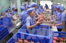 越南水果远销世界60个国家与地区