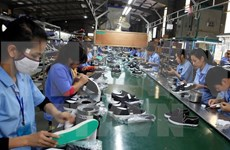 越南对南非市场出口额大幅增长