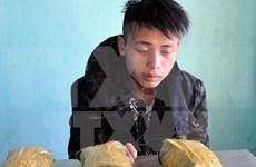 广宁和清化两省职能力量逮捕毒品犯罪嫌疑人