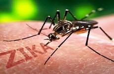 中国新增两例输入性寨卡病毒感染病例