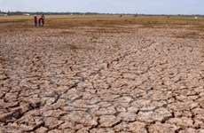 九龙江平原居民克服气候变化造成的影响