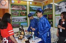 越南学生参加在柬埔寨举行的国际文化节