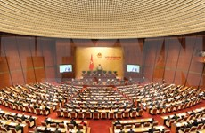 越南十三届国会的革新