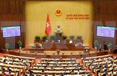 越南第十三届国会第十一次会议:国会提名第十三届国会副主席人选