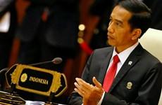 印尼总统访德  促进双边关系