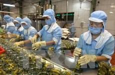 越南企业组团赴新西兰参观考察寻找商机