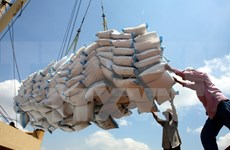 今年上半年越南大米出口有望增长12%