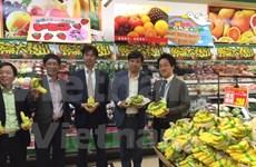 越南香蕉在日本受到好评