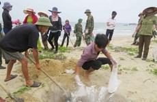 阮春福总理关于中部一些省份海产品异常死亡事件的指导性意见