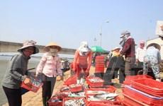 为渔民颁发安全海域的水产品安全证书