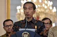 印尼总统佐科·维多多:俄罗斯是印尼与东盟的战略伙伴