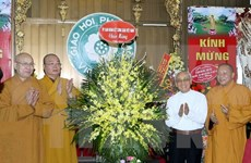 佛历2560年佛诞节活动在越南各地举行