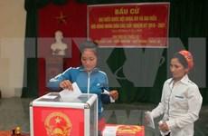 越南内务部:选举日庄重、认真和依法举行