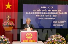 越南党、国家领导人参加投票 行使自己的民主权利