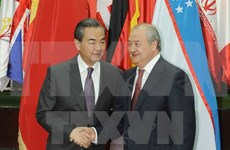 上海合作组织支持维护东海和平与稳定