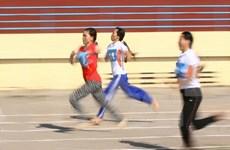 2016年越南全国残疾人体育锦标赛将吸引1000多名运动员参赛