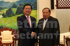 老挝领导人对胡志明市与老挝各地合作效果予以高度评价