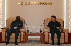 坦桑尼亚希望借鉴越南经验