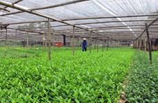 越南富寿省努力寻找发展集体经济之路