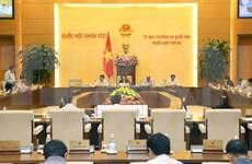 越南第十三届国会常务委员会第49次会议即将召开