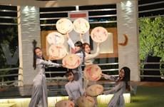 越南文化在埃及尼罗电视台精彩亮相