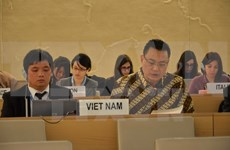 越南代表在联合国人权理事会第32次会议多场讨论会上积极建言献策