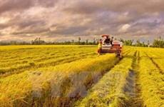 越南要争分夺秒全力以赴完成全年GDP增长6.7%的目标