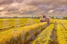 越南坚持出口额增长10%的目标