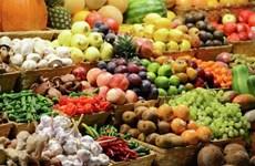 越南蔬果出口额超11亿美元