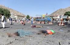 越南就喀布尔自杀式爆炸袭击向阿富汗致慰问电