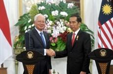 马来西亚与印度尼西亚加强解决领土争端问题