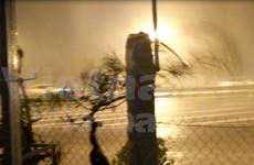 越南政府领导视察台风防范应对工作