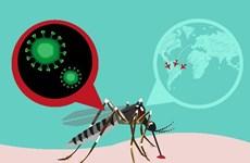 日本东京发现一名越南公民感染寨卡病毒
