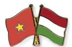 越南—匈牙利友谊交流会在河内举行