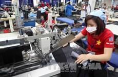 承天顺化省纺织服装企业努力转变生产模式